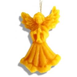 Anjel s trúbkou
