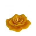 Plávajúca ružička